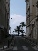 Häuserschluchten und Palmen