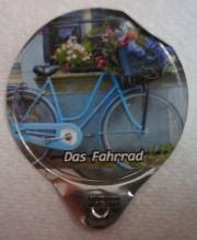 Blaues Rad unter dem Blumenfester