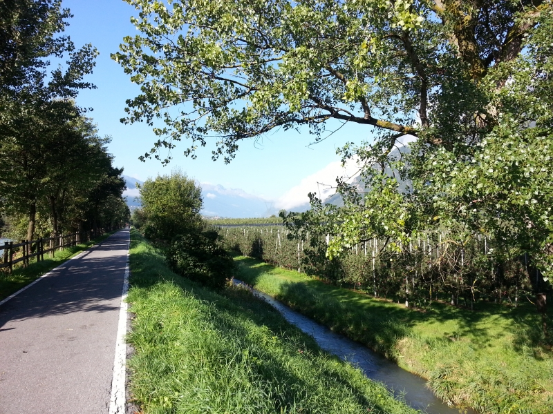 Radweg entlang dem Adige