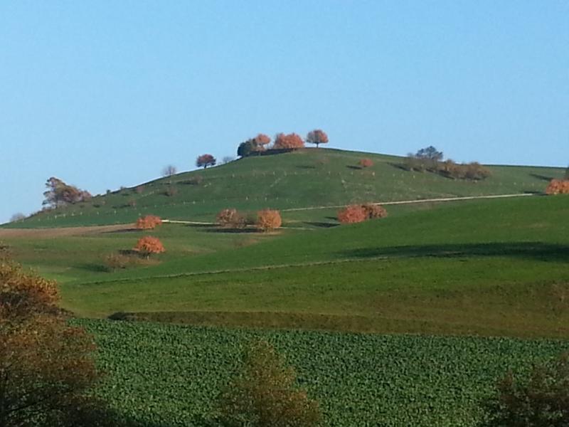 Herbst im Mettauertal