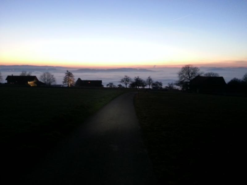 Abendstimmung am Heitersberg