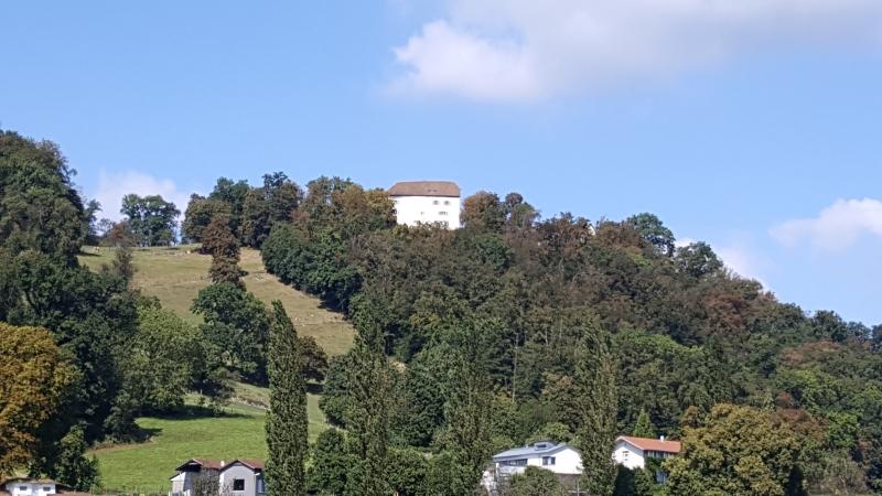 Brunegg