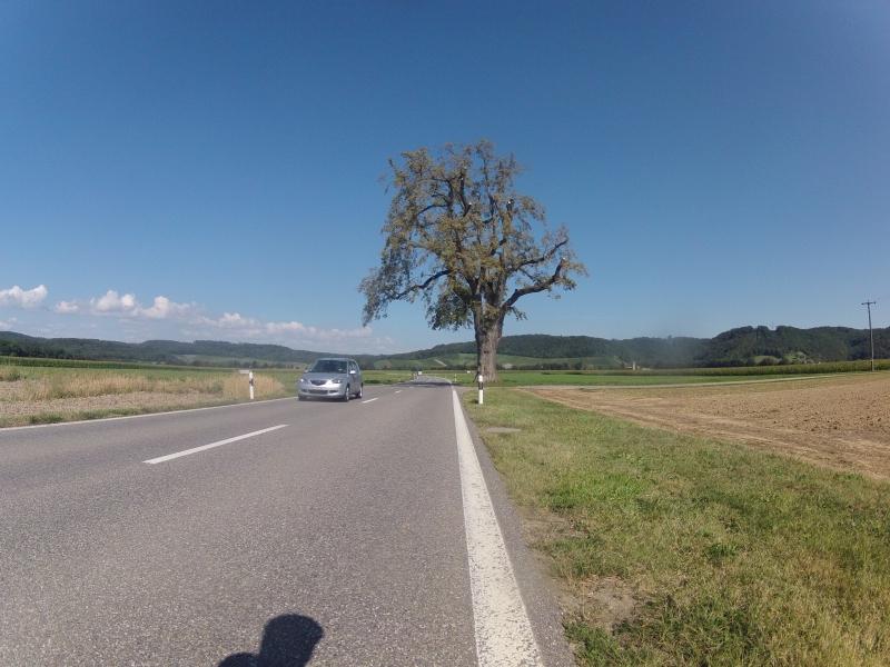Würenlingen - Tegerfelden