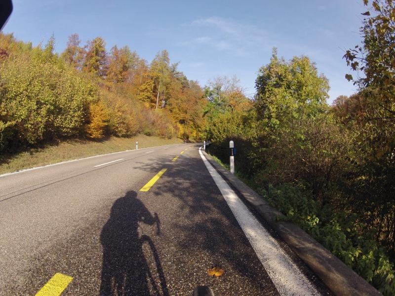 Herbstlicher Wald an der Bürensteig