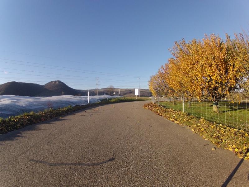 Herbstliches Villigerfeld