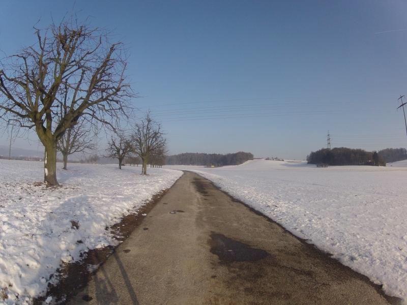 Radweg bei Leibstadt