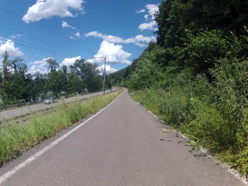 Radweg dem Rhein entlang