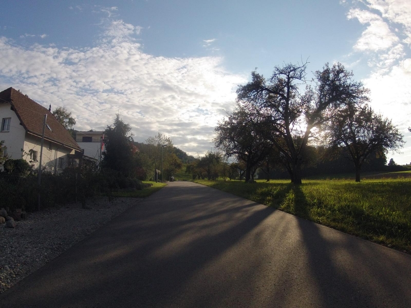 Radweg über Mellingen/Büblikon