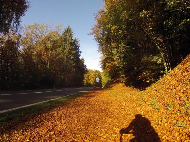 Herbstlicher Radweg nach Full