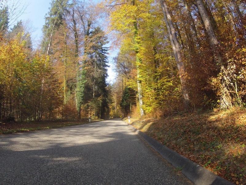 Zwischen Böttstein und Mandach