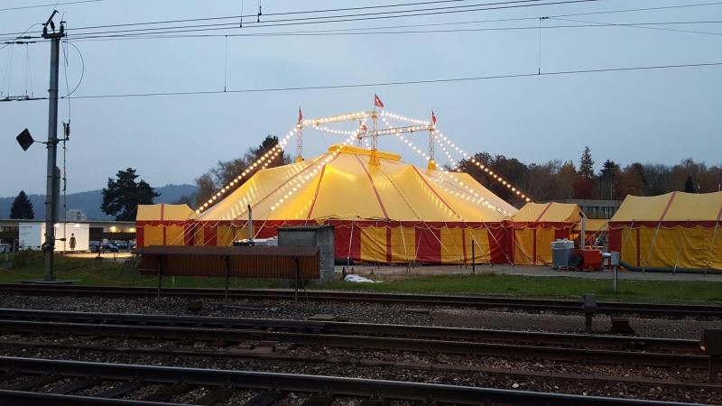 Zirkus in Dottikon