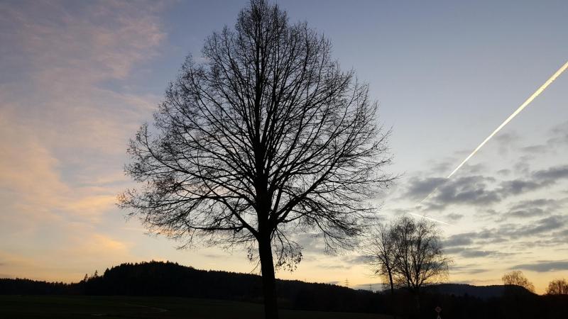 Abendstimmung zwischen Leibstadt und Leuggern