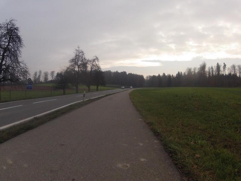Radweg zwischen Birrhard und Mellingen