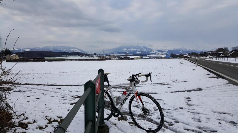 Oberhalb Sins, Blick zurück in die verschneiten Alpen