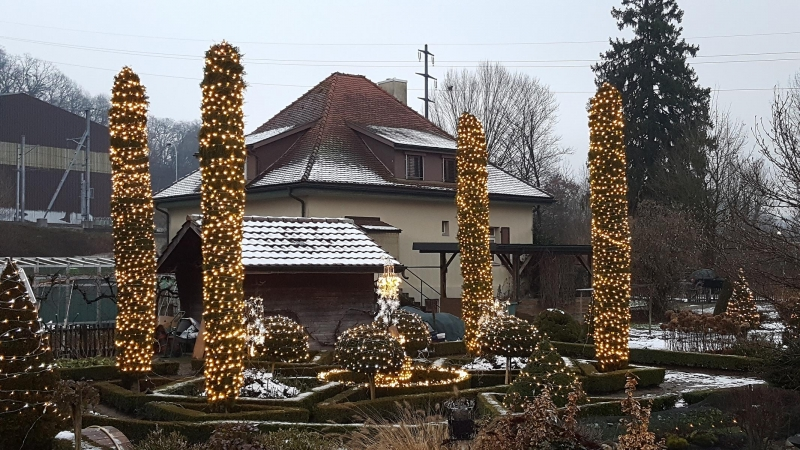 Viele Lichter im Garten
