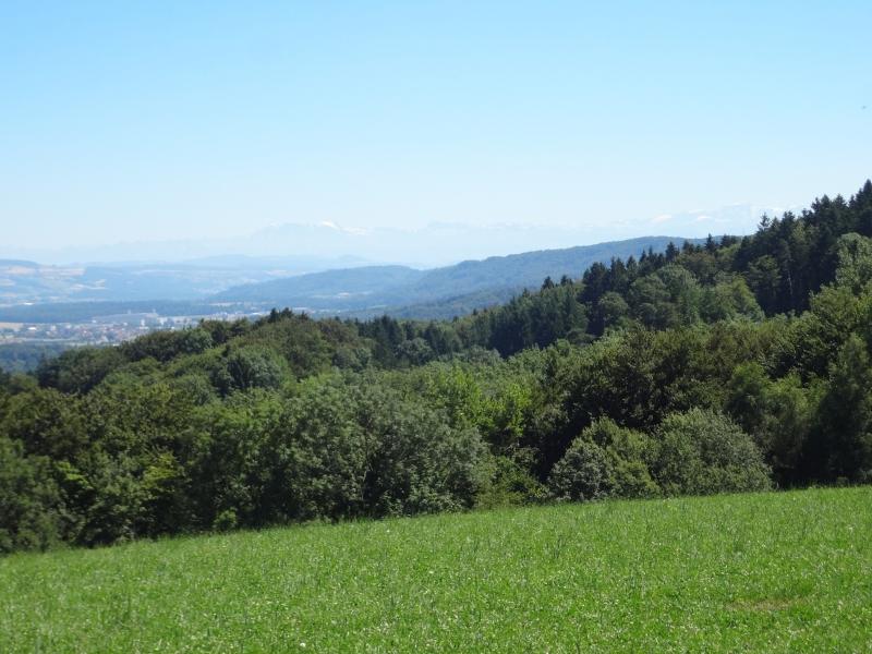 Aussicht vom Bözberg in die Alpen