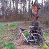 Adler auf Rennrad