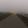 Nebel und Dämmerung