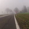 Nebel am Bözberg