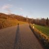 Zwischen Biberstein und Auenstein im Abendlicht