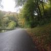Herbstliche Farben am Bööler