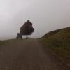Knapp an der Nebelgrenze bei Kaisten