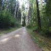Auf Gravel nach Rupperswil
