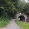 Tunnel für die Bünz