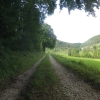 Feldweg nach Mönthal