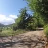 Blick auf die Strasse zur Bürensteig