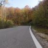 Herbstwald an der Bürensteig