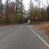 Herbstlicher Wald zwischen Leutwil und Zetzwil
