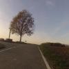 Kreuz am Radweg zwischen Wohlen und Dottikon