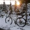 Rennrad im winterlichen Abendlicht