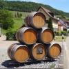 Weinfässer in Tegerfelden