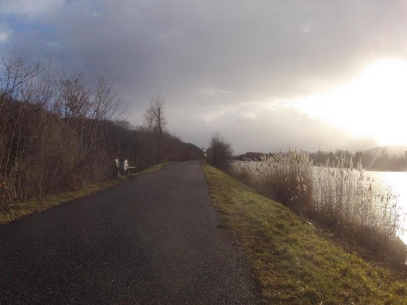 Dammweg der Aare entlang bei Schinznach-Bad