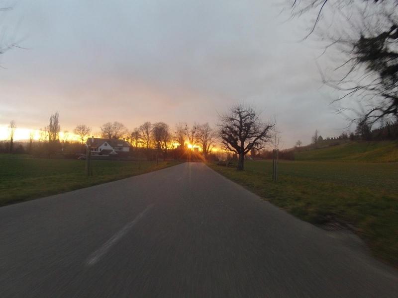 leuchtende Abendsonne bei Wildegg