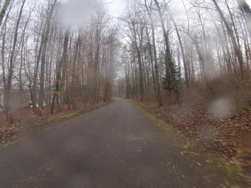 Unterwegs im Auenwald, Schneeregen