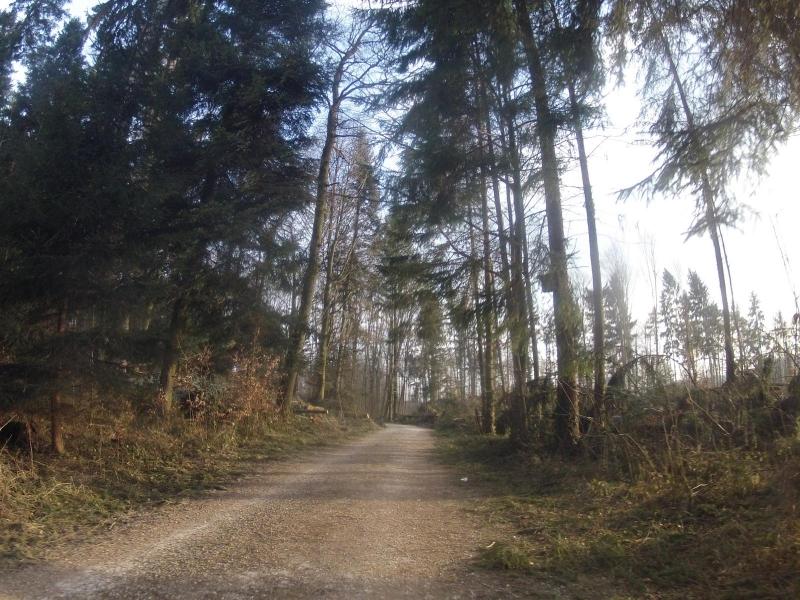 Auf Radwegen nach Lenzburg