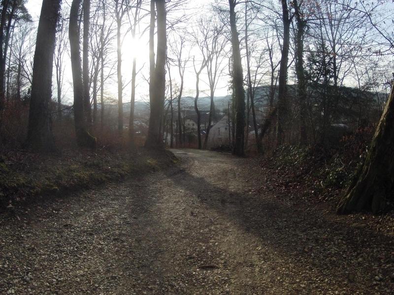 Radweg um Würenlingen herum