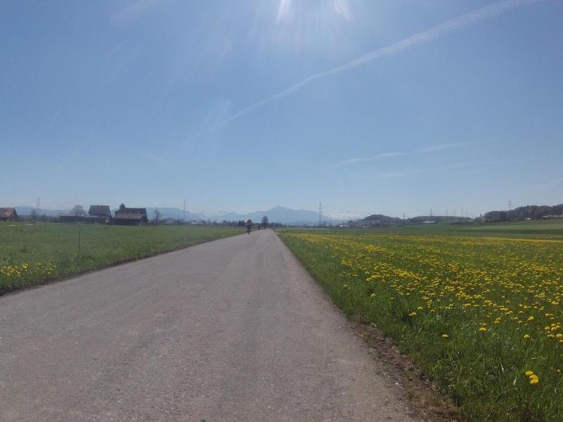 Frühlingsstimmung im Reusstal
