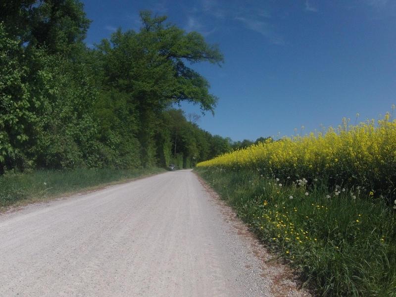 Auf der Radroute 2