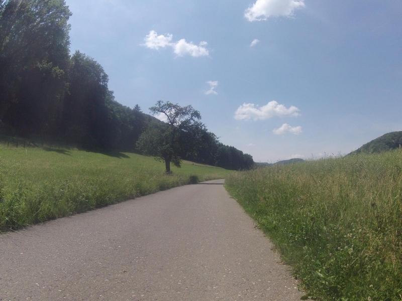 Auf dem Radweg nach Mönthal