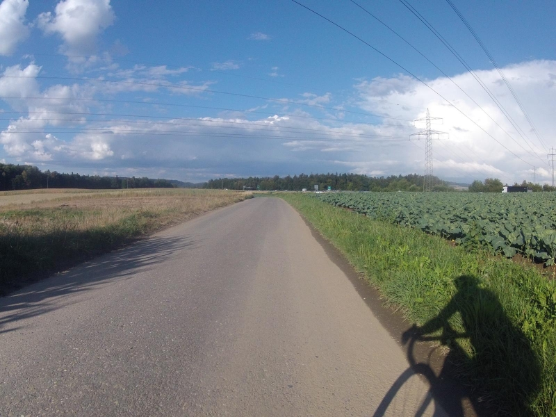 Von Brunegg nach Birrhard