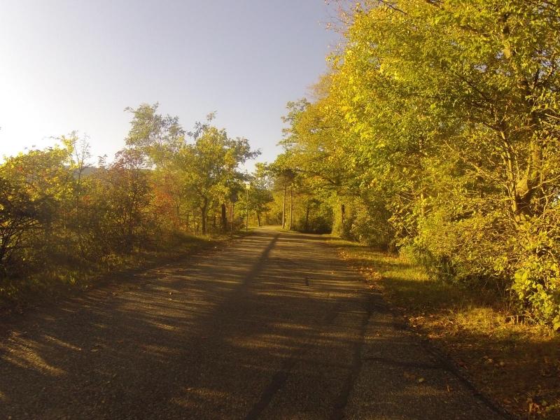 Dammweg entlang der Aare