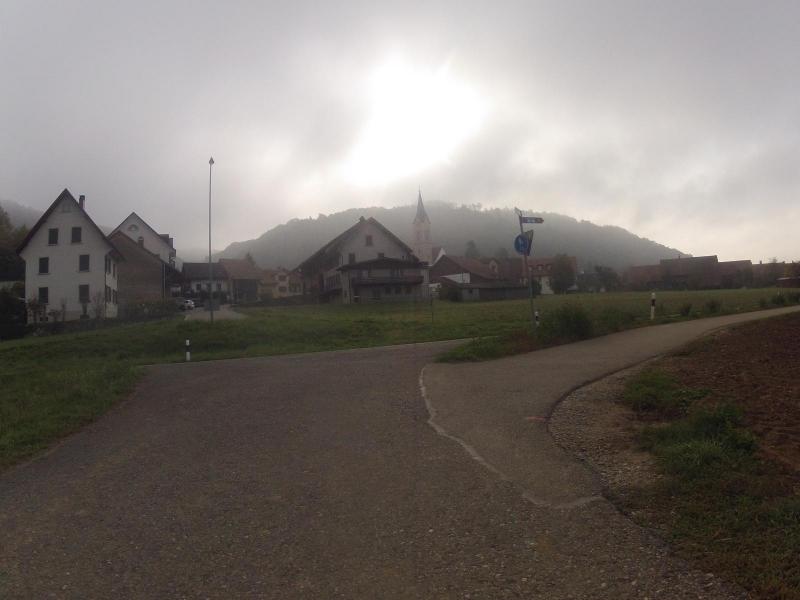 Nebel über Unterendingen
