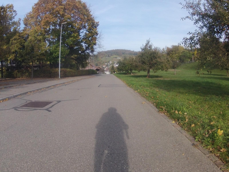 Radweg nach Endingen