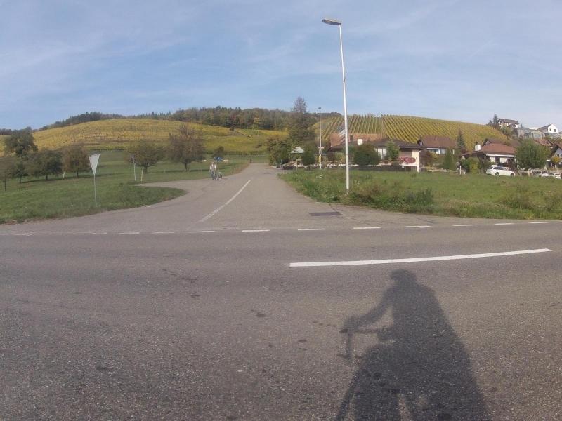 Radweg im Surbtal entlang der Rebberge