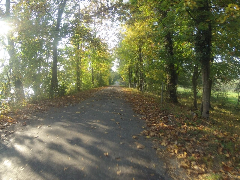 Herbstlicher Radweg bei Biberstein