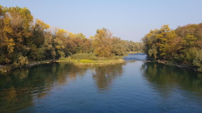 Herbststimmung am Aarekanal